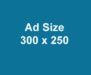 300×250-example-banner