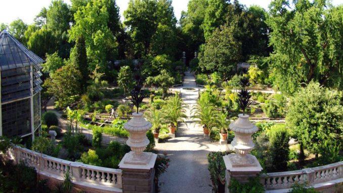 パドヴァの植物園