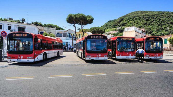 イスキア島のバス