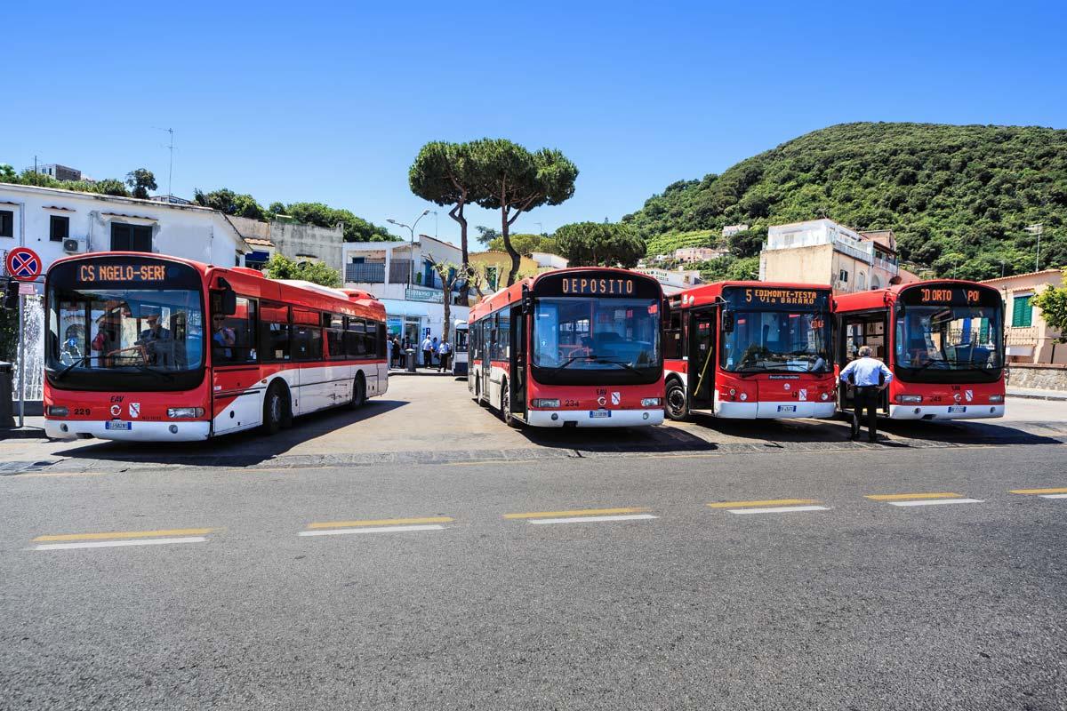 ischia-bus