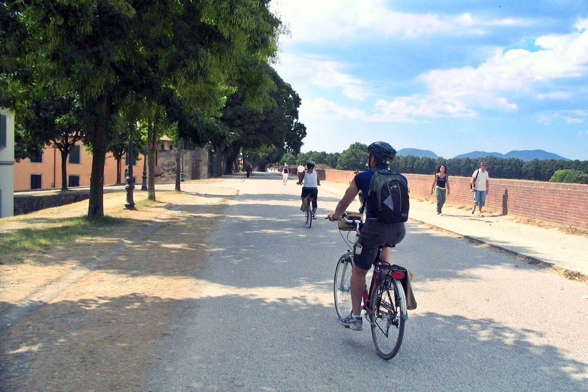 lucca_bike-rental