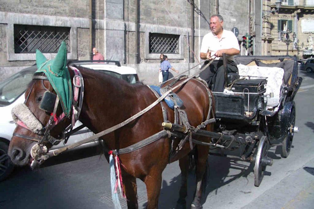 パレルモの観光用馬車