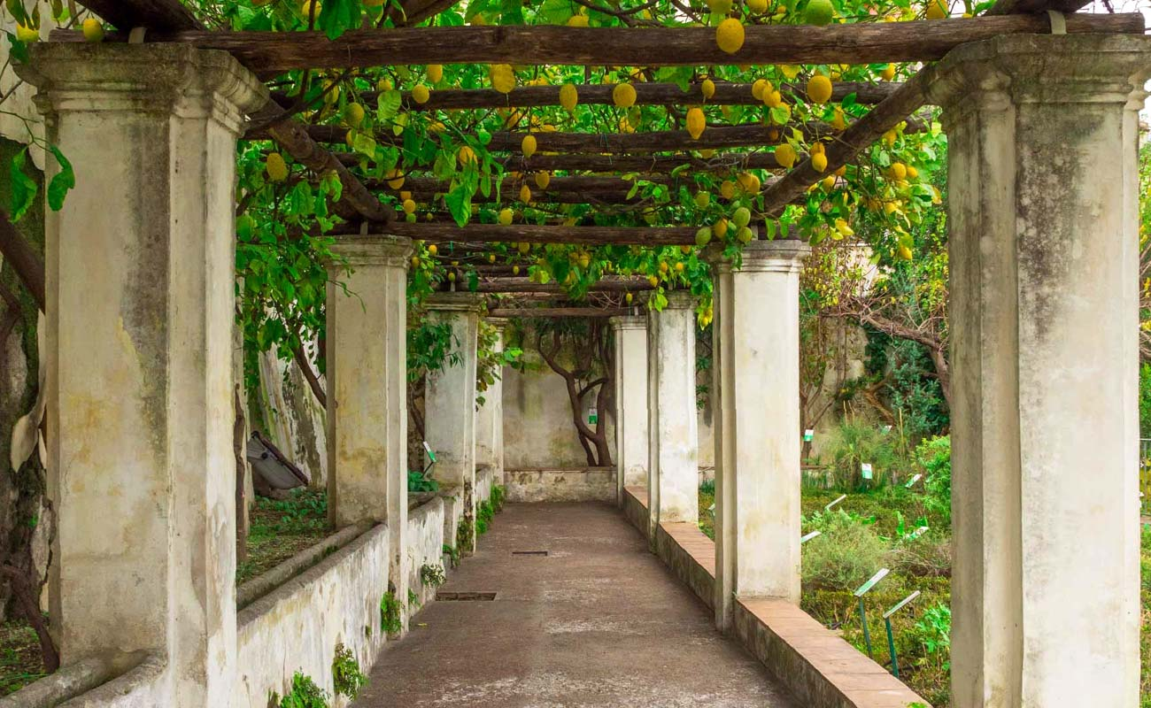 salerno_giardino-della-minerva