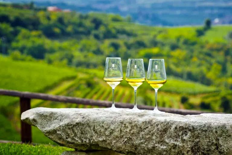 venezia_soave-winery2