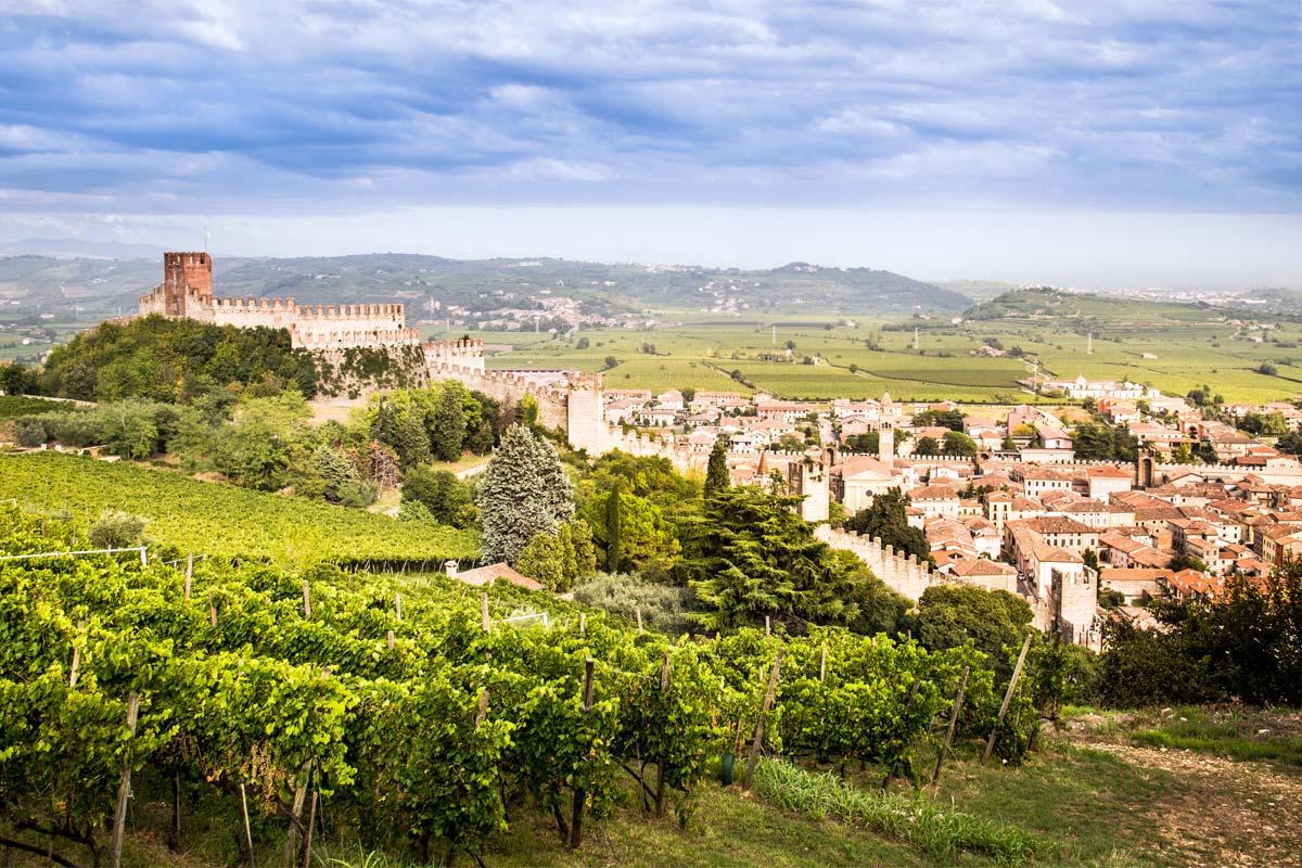 verona-soave-winery