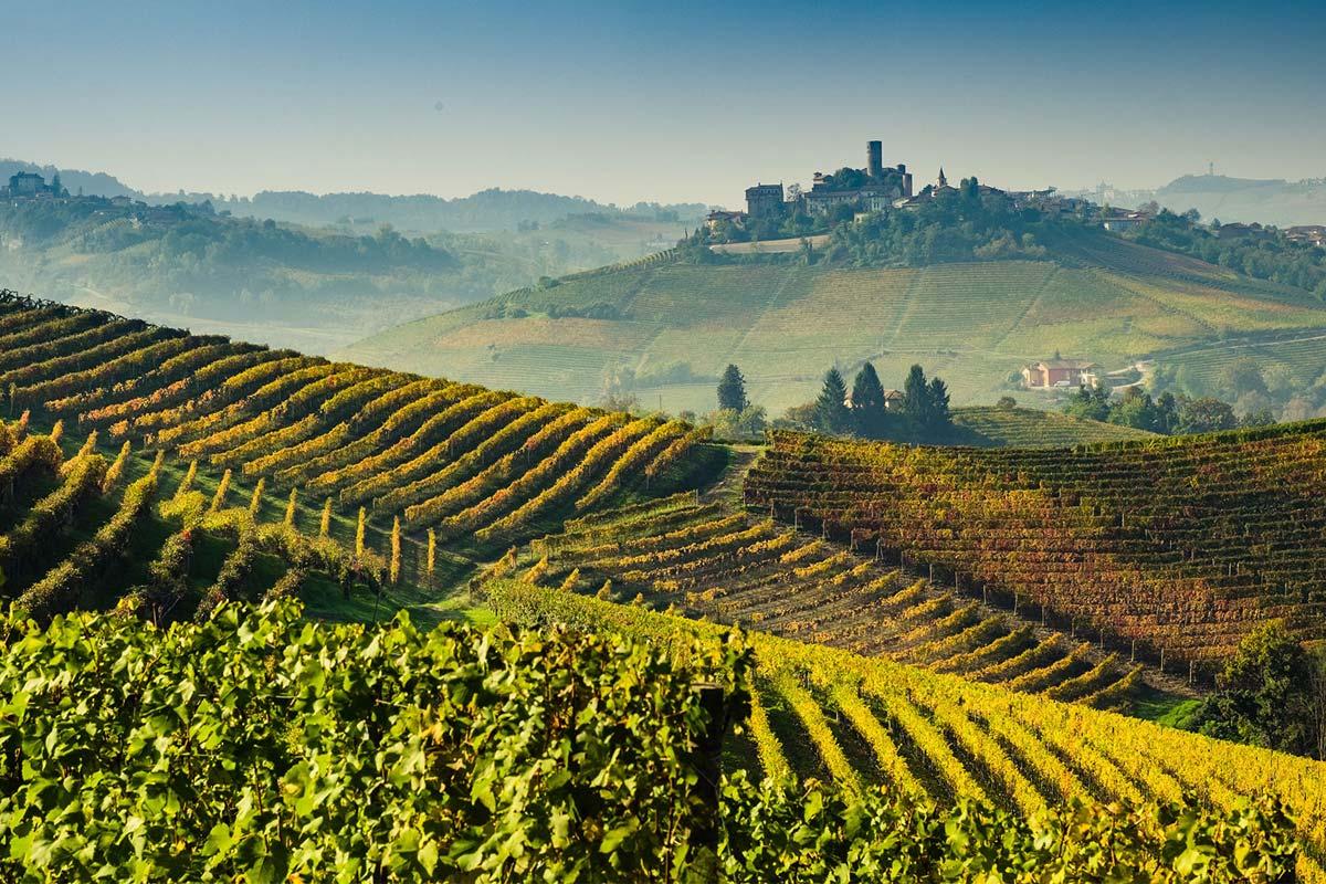 milano-barolo-winery1