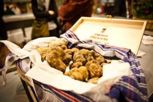 白トリュフの国際見本市(Alba International White Truffle Fair)